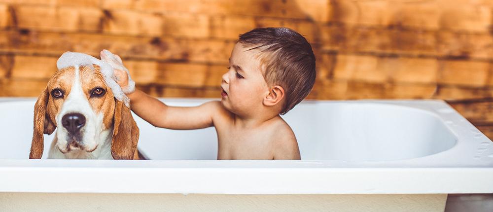 Enfant lave son chien dans la bain