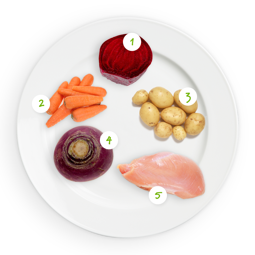 ingrediënten bordje gekleurde groenten