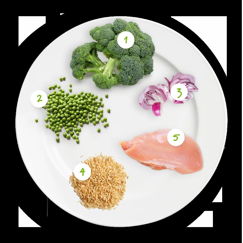 ingrediënten broccoli witte saus kip